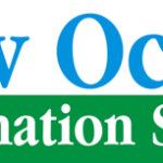 New Ocean Information System(NOIS)